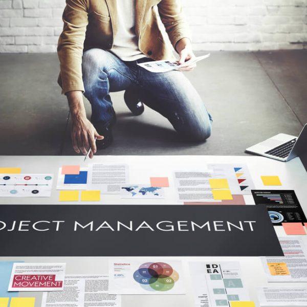 project-management-professional-pmp-online